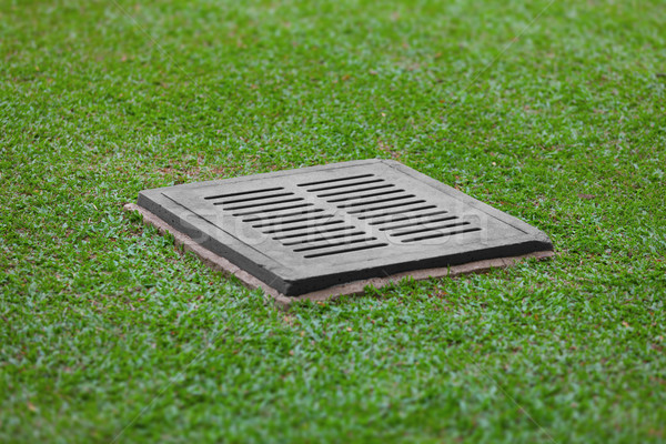 Sewer grate on the lawn - drainage for heavy rain Stock photo © pzaxe