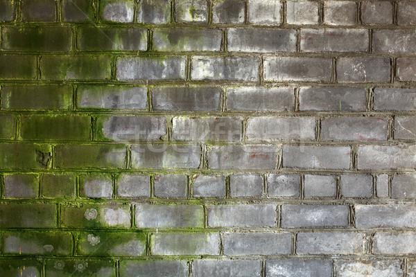 Brick old wall Stock photo © pzaxe
