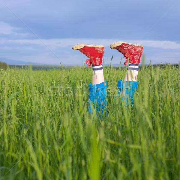 Legs, in a green grass Stock photo © pzaxe