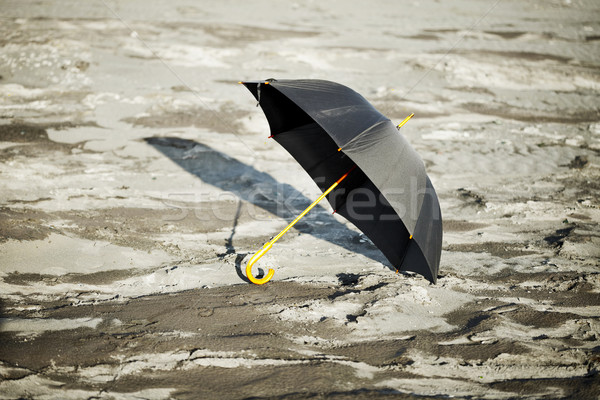 Large old-fashioned black umbrella Stock photo © pzaxe