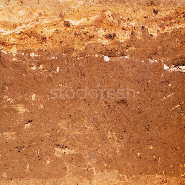 Surface of brown earth Stock photo © pzaxe