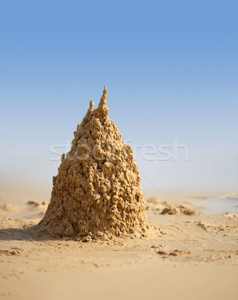 Surreal sand castle on beach Stock photo © pzaxe