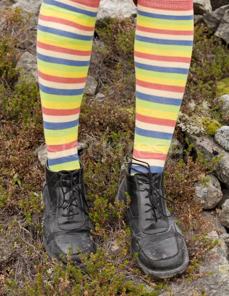 Amusing striped feet in boots Stock photo © pzaxe