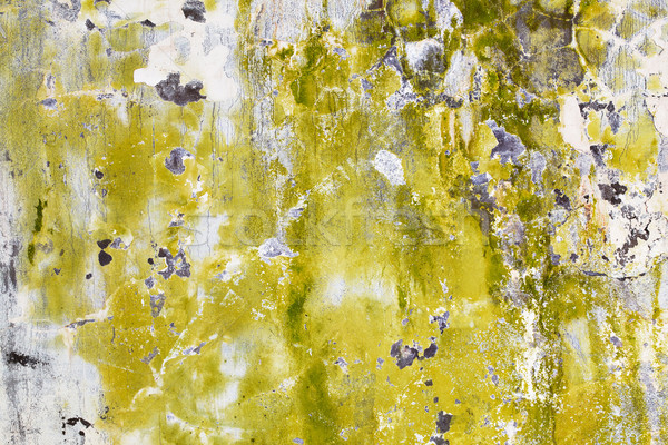 Mold and algae on dirty wall Stock photo © pzaxe
