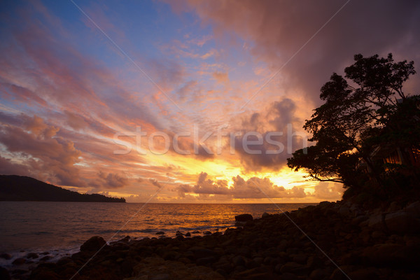 Beautiful tranquil sun rise on the coastline Stock photo © pzaxe