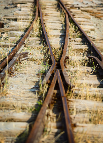 Switch on the old narrow-gauge railway Stock photo © pzaxe