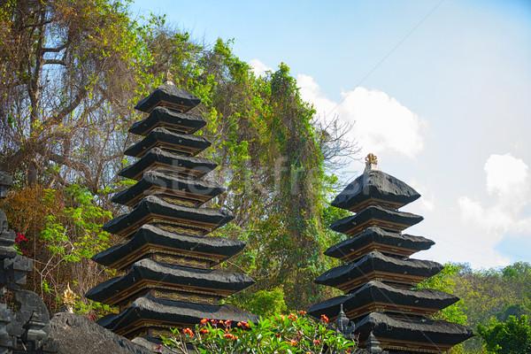 Heaps of Guano at Goa Lawah Bat Cave Temple in Bali Stock photo © pzaxe