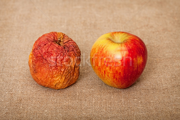 Two fruit against canvas - bad and good apples Stock photo © pzaxe