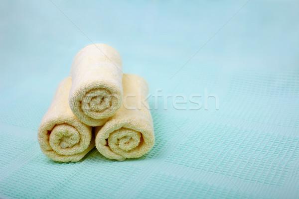 слоновая кость Spa синий аннотация здоровья Сток-фото © pzaxe