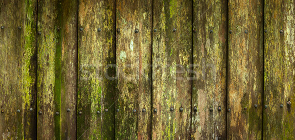 Close-up of beautiful moldy palings background Stock photo © pzaxe