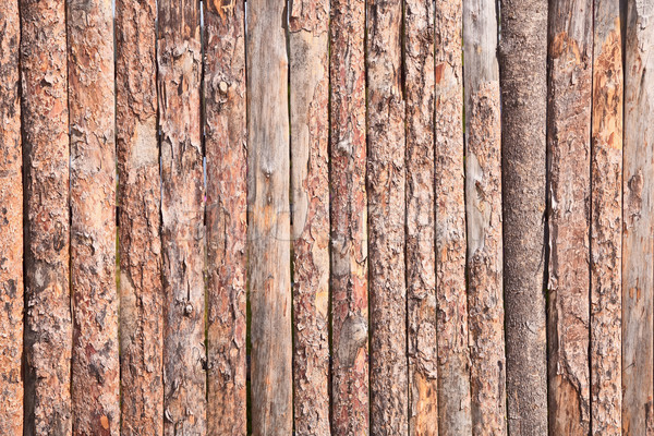 Rural primitive fence from pine logs Stock photo © pzaxe