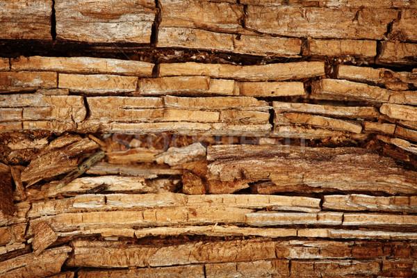 Rotten wood background Stock photo © pzaxe