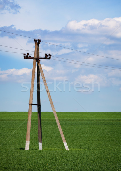 Concrete pole - power lines in the field Stock photo © pzaxe