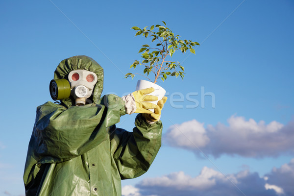 Person in protective clothes holds last ficus Stock photo © pzaxe