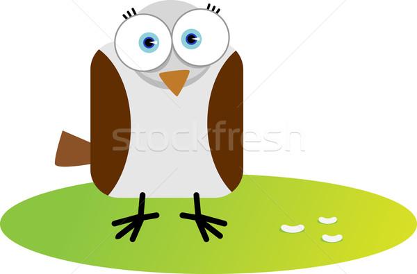 квадратный птица иллюстрация Cartoon большой глаза Сток-фото © qiun