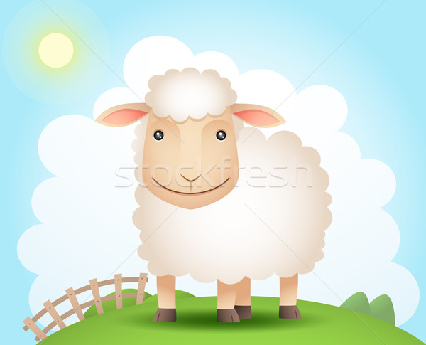 Sheep on the hill Stock photo © qiun