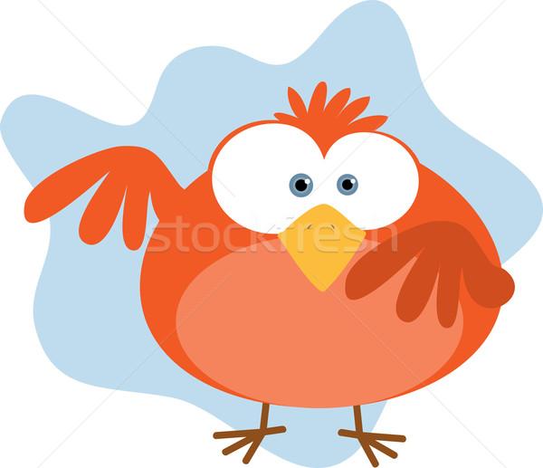 красный жира птица Сток-фото © qiun