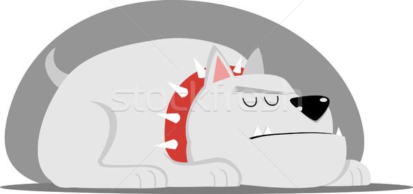 Big Dog with red collar Stock photo © qiun
