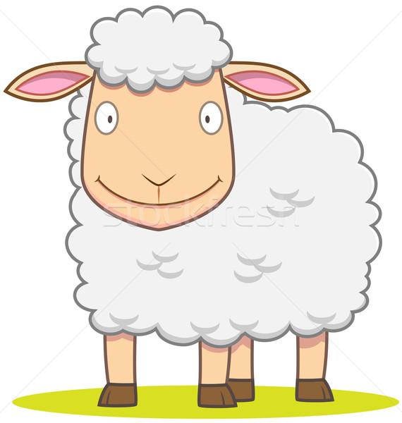 Smiley Sheep Stock photo © qiun