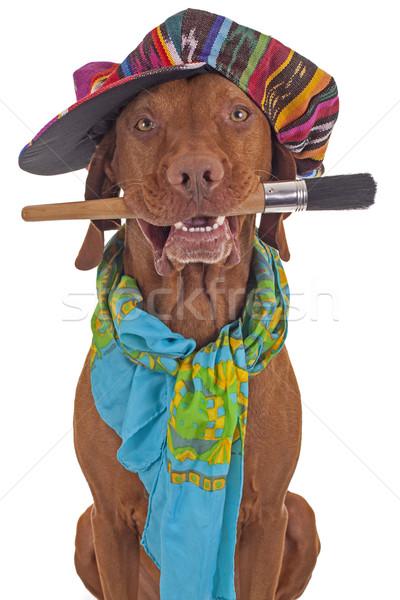 Ressam sanatçı köpek şapka eşarp Stok fotoğraf © Quasarphoto