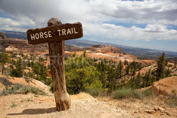 лошади тропе знак красный Сток-фото © Quasarphoto
