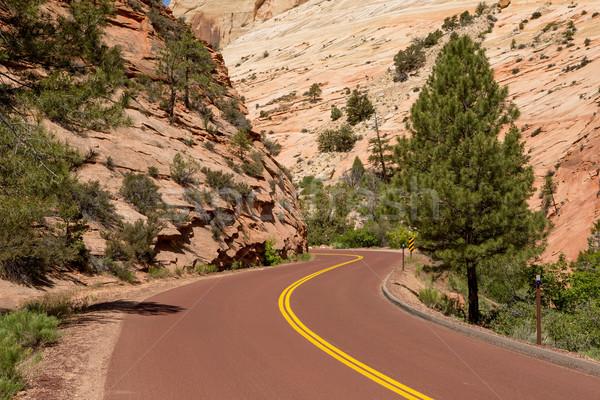 Yol kanyon kırmızı renk ağaç Stok fotoğraf © Quasarphoto