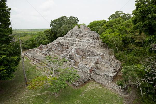 Mayan pyramid ruin surrounded by jungle Stock photo © Quasarphoto