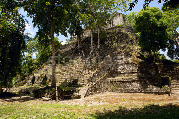 nature overtaking a pyramid ruin Stock photo © Quasarphoto