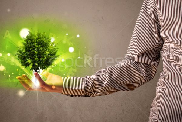 Stockfoto: Boom · groeiend · hand · zakenman · jonge