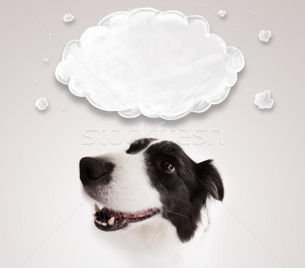 Cute Бордер колли пусто облаке черно белые Сток-фото © ra2studio