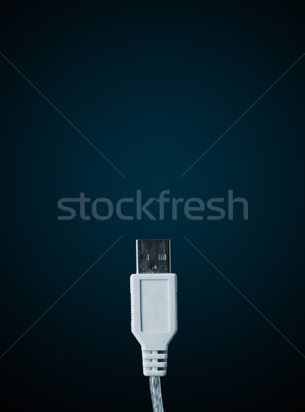 Electric cable with copy space Stock photo © ra2studio