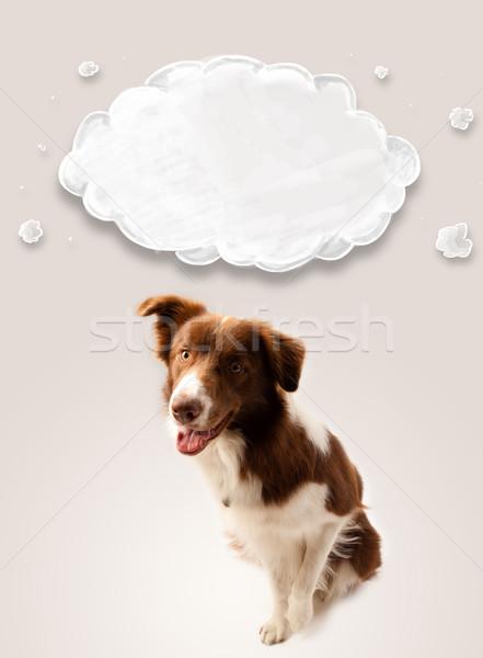 かわいい ボーダーコリー 空っぽ 雲 ブラウン 白 ストックフォト © ra2studio