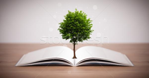 Fa növekvő nyitott könyv alternatív újrahasznosítás könyv Stock fotó © ra2studio