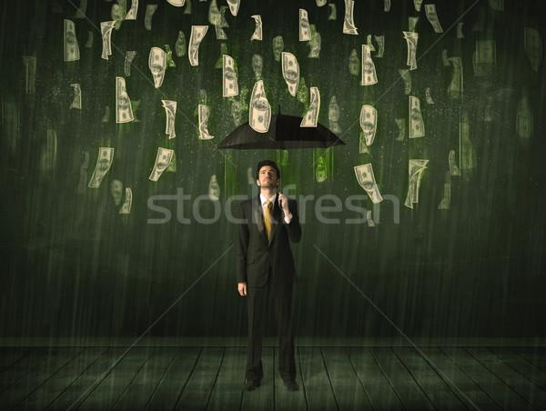 Zakenman permanente paraplu dollar Bill regen Stockfoto © ra2studio