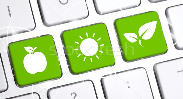 ストックフォト: キーボード · エコ · オプション · 白 · インターネット · 作業