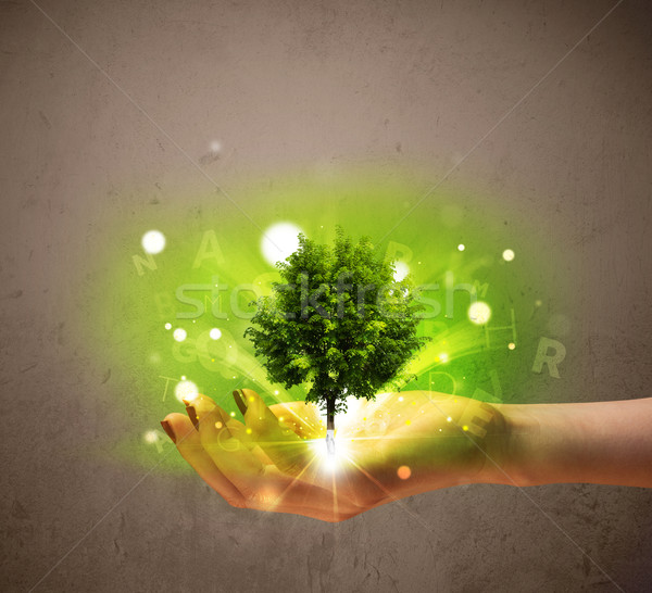 Glowing tree growing in the hand of a woman Stock photo © ra2studio