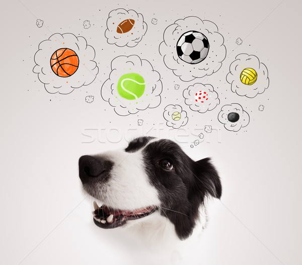 Cute dog with balls in thought bubbles Stock photo © ra2studio