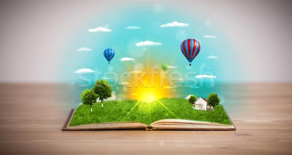 Stock fotó: Nyitott · könyv · zöld · természet · világ · ki · oldalak