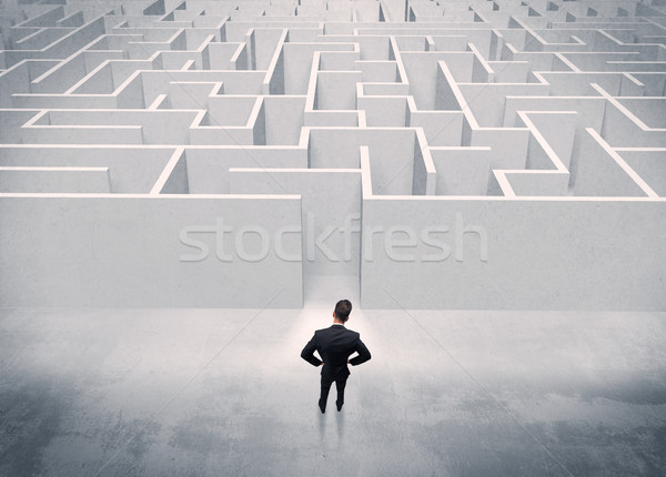 Sales person standing at maze entrance Stock photo © ra2studio