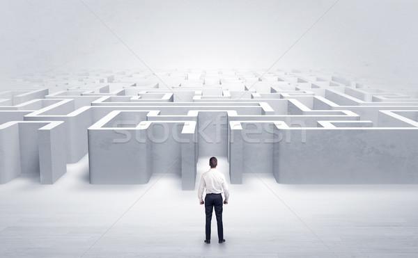 Imprenditore bordo labirinto ingresso scegliere Foto d'archivio © ra2studio