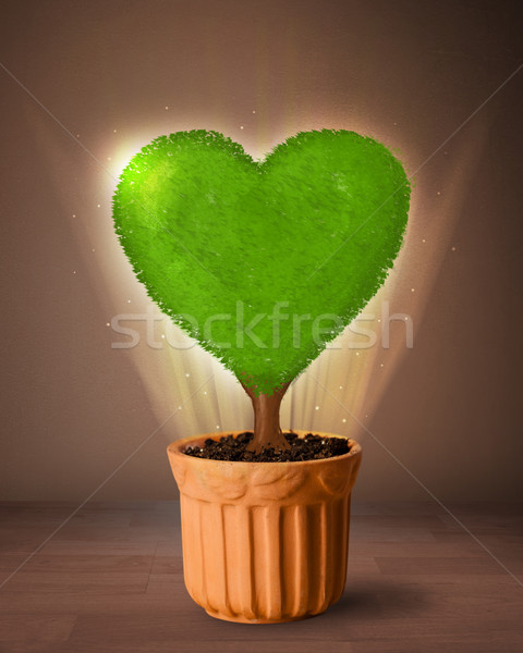öko szív fa ki virágcserép izzó Stock fotó © ra2studio