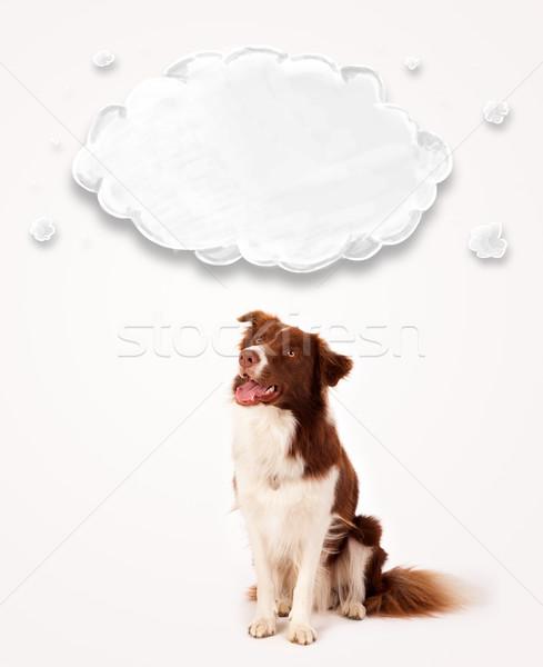Cute border collie with empty cloud Stock photo © ra2studio