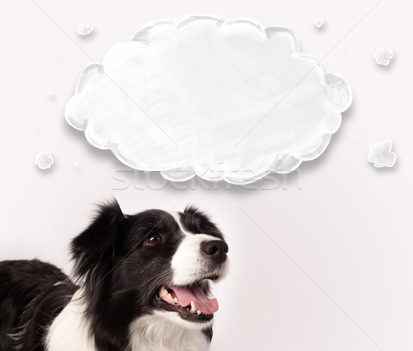 Aranyos juhászkutya üres felhő feketefehér fölött Stock fotó © ra2studio