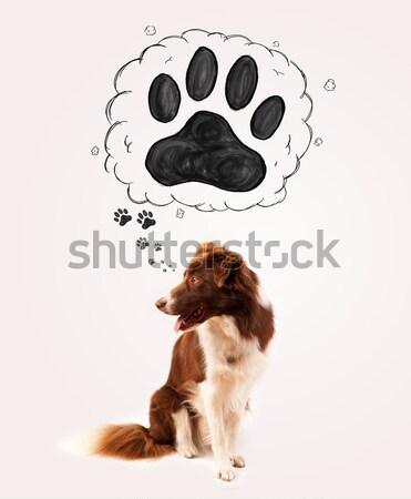 Aranyos juhászkutya mancs fölött fej barna Stock fotó © ra2studio
