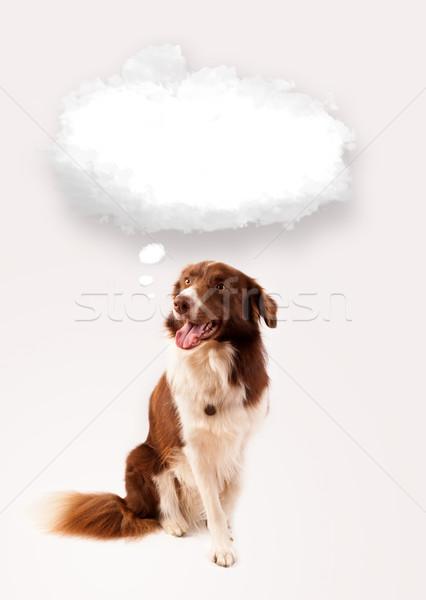 Cute cane vuota nube bolla rosolare Foto d'archivio © ra2studio