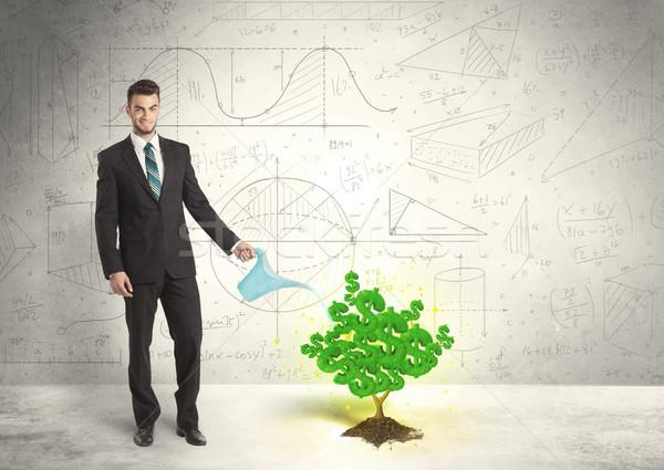ビジネスマン 水まき 成長 緑 ドル記号 ツリー ストックフォト © ra2studio