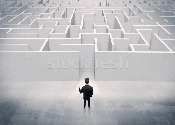 Satış kişi ayakta labirent giriş iyi görünümlü Stok fotoğraf © ra2studio