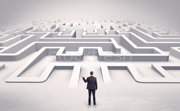 Zakenman 3D labyrint klaar business Stockfoto © ra2studio