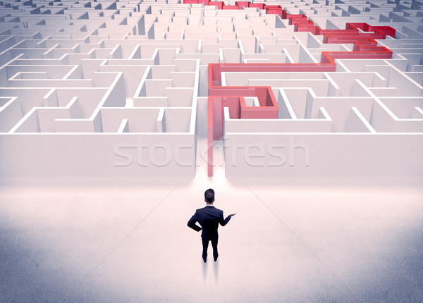Maze solved for businessman concept Stock photo © ra2studio
