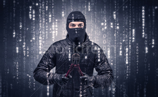 Burglar in action with encoded concept. Stock photo © ra2studio